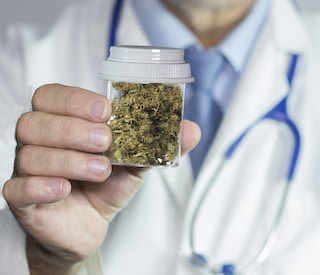 doctor prescribing marijuana to dementia patients